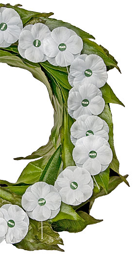 White Poppies sold by the Peace Pledge Union