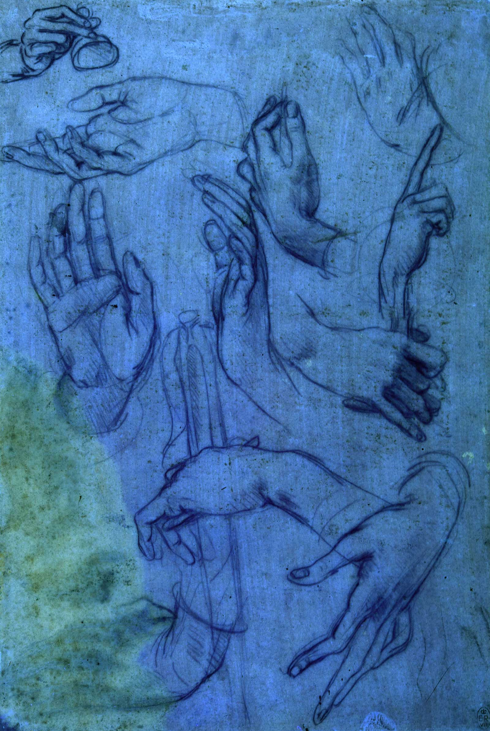 Studies of hands for the Adoration of the Magi â?? sheet 1 under ultraviolet light, c.1481, metalpoint (faded) on pink prepared paper, by Leonardo da Vinci, to be displayed at The Queen's Gallery, Buckingham Palace, London