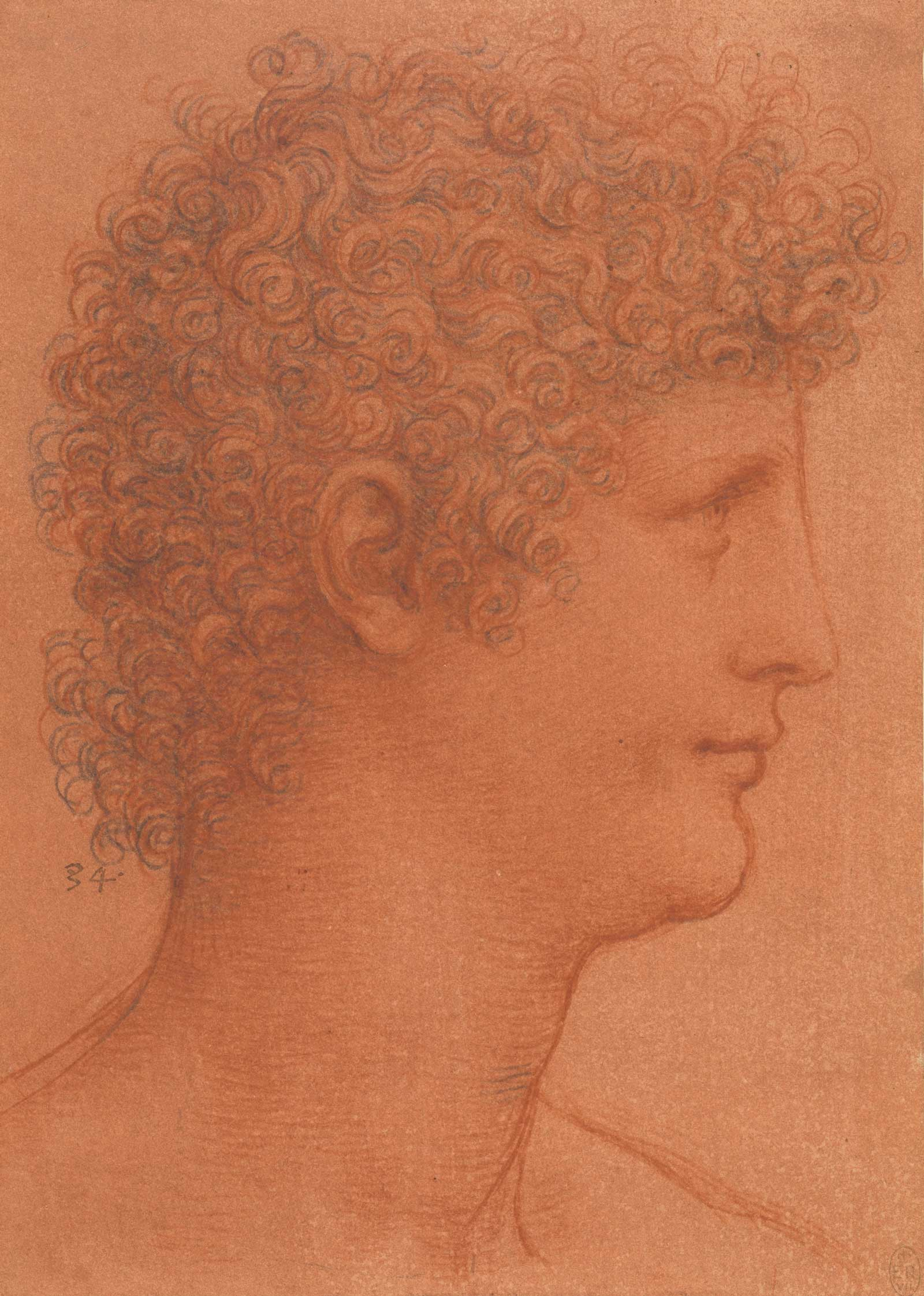 The head of a youth, c.1510, red and black chalks on orange-red prepared paper by Leonardo da Vinci, to be displayed at Manchester Art Gallery